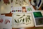 Taller de identificación de especies